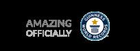 Guinness World Records Official Logo